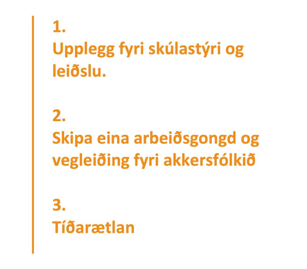1. Upplegg fyri skúlastýri og leiðslu. 2. Skipa eina arbeiðsgongd og vegleiðing fyri akkersfólkið. 3. Tíðarætlan